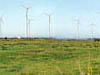 Our Bambers Farm wind park