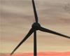 Our wind park at sunset