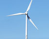 somerton wind turbine