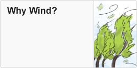 Why wind?